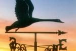 Korouhev - Letící pták