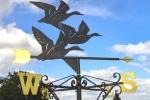 Korouhev - Ptáci